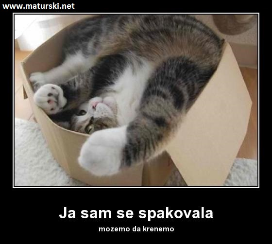 [Slika: 232323322332.jpg]
